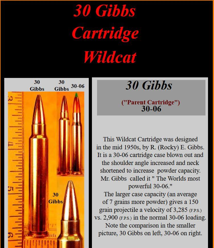 .30 GIBBS cartridge.JPG
