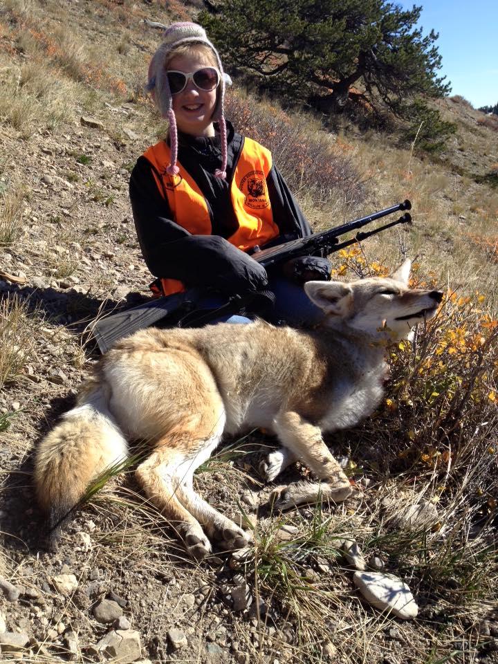 Bailey Coyote.jpg