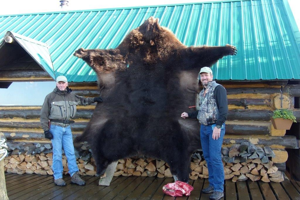 Bear skin.JPG
