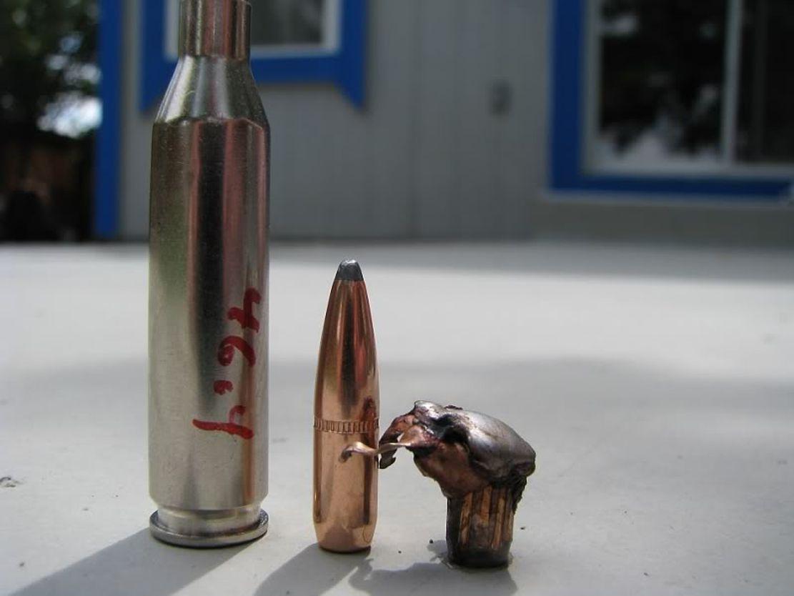 bullet006.jpg