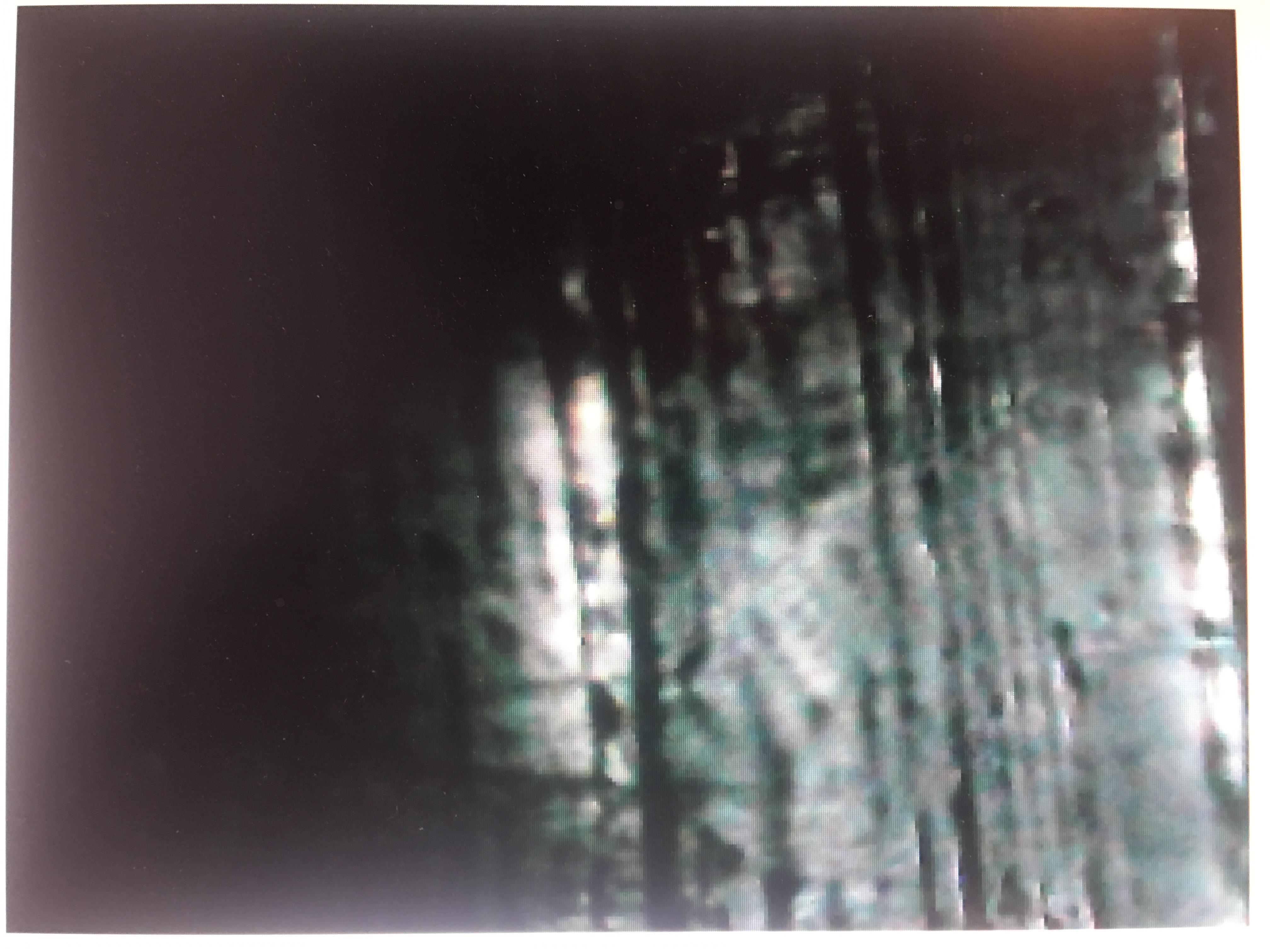CD5990EB-3CF0-4174-A15E-34AA5A68738E.jpeg