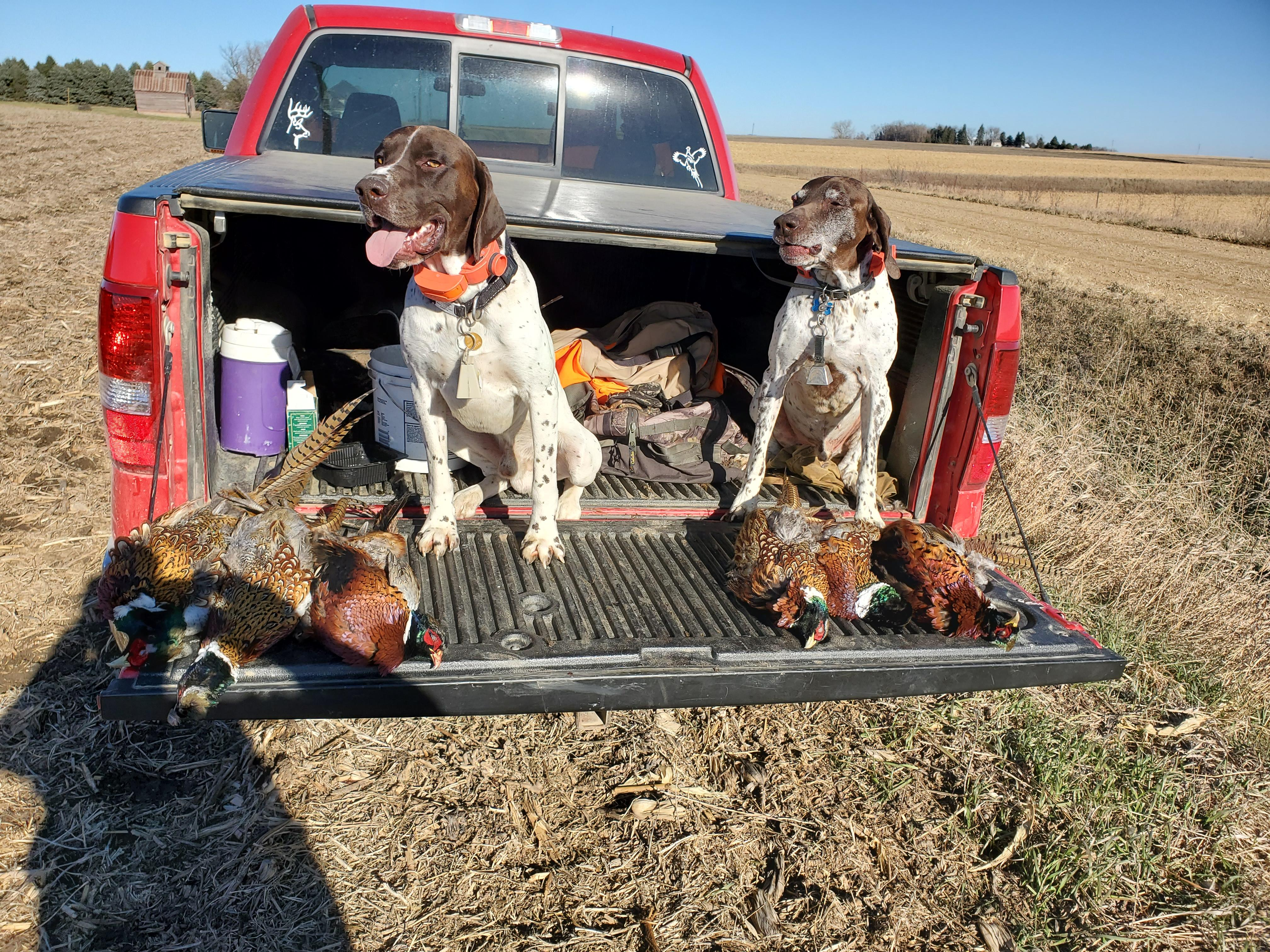 Dude & Rowdy with 2 limits.jpg