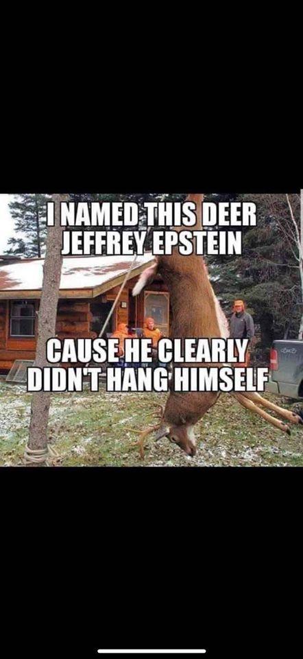 Epstein deer.jpg