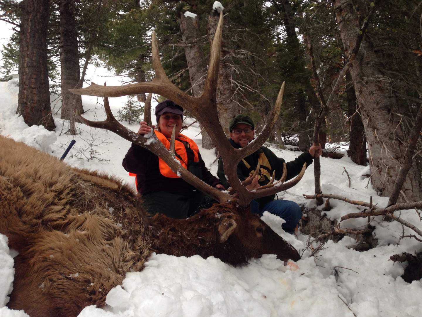Who has killed lots of elk with a 6 5 mm bullet? | Long
