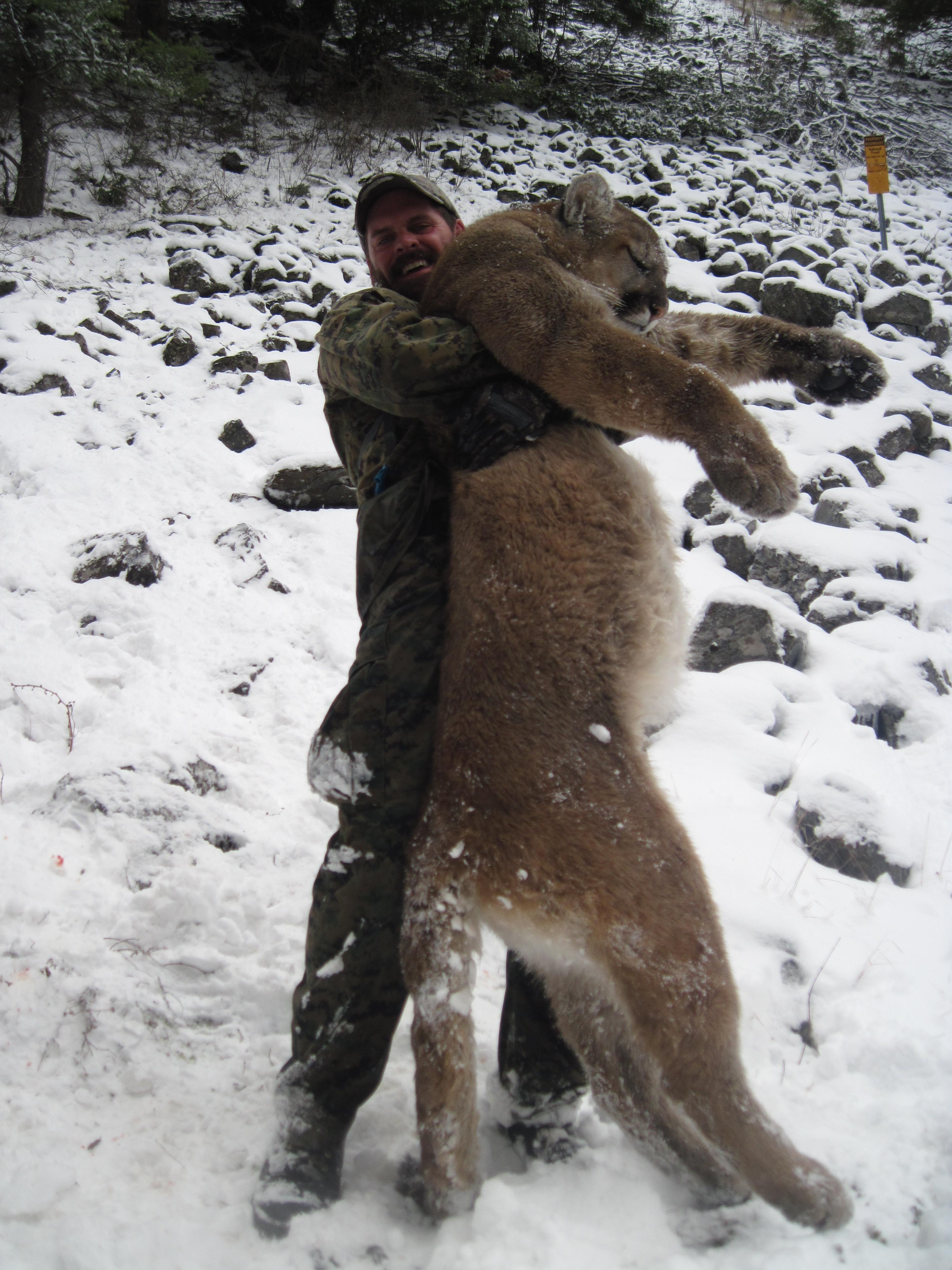 Lion Hunt 2014 006.JPG