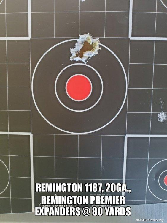 remington-1187-20ga.thumb.jpg.36a111656c3e6353dc314ef25679dd25.jpg