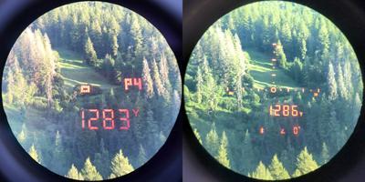 RF-Displays.jpg
