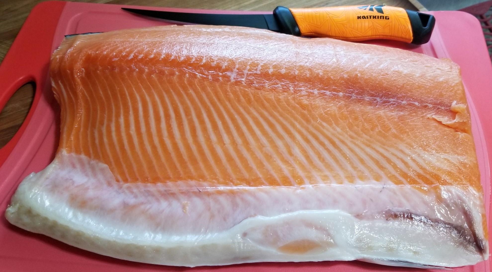Salmon 1 of 3.jpg