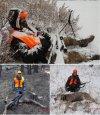 J deer collage.jpg