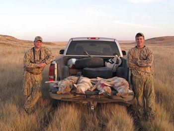 A Coyote Hunting Misadventure