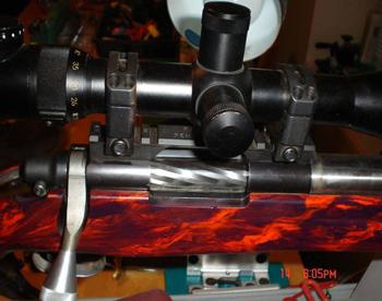 Custom Rifle Looks