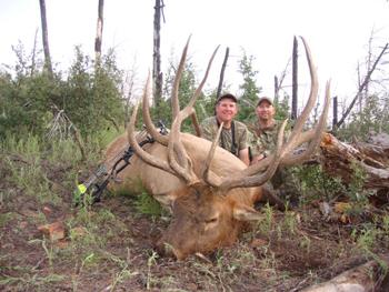 Elk Hunting Number 42