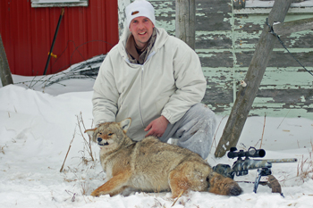 Extreme Weather Coyotes