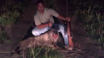 Hog Hunting � The Off Season Solution