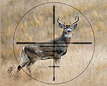 Choosing And Using Modern Reticles