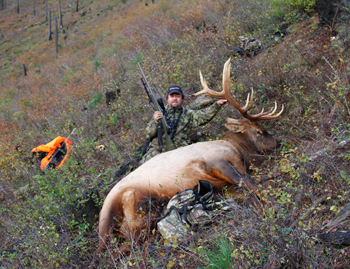 Hunting My Pressured Elk
