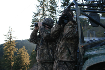 Hunting Black Bear By Spot And Stalk