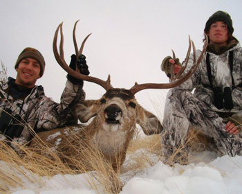 5 Tips For Success In High Country Mule Deer Hunting