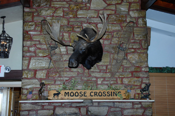 Wyoming's Big Horn Mountains – The Outdoorsman's Family Resort